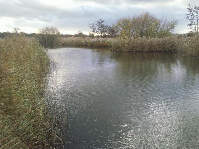 A quiet part of the London Wetland Centre