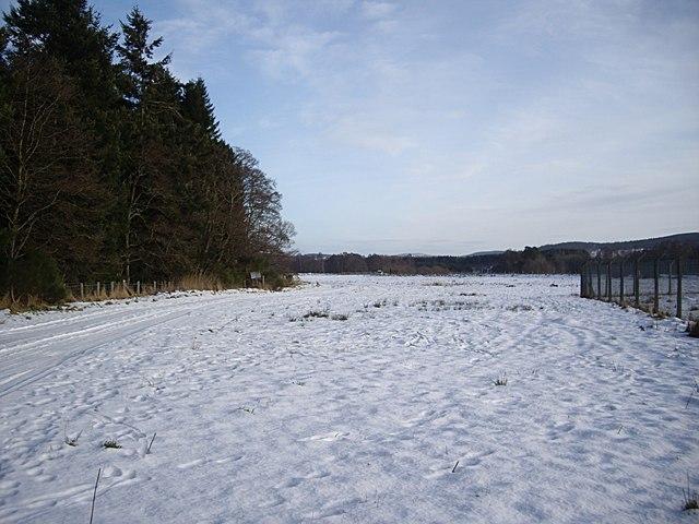Aboyne snow field