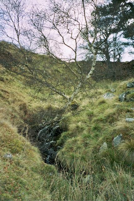 Burn near the ruin of Delriach