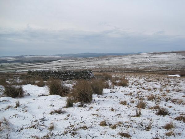 Sheepfold near the Pennine Way