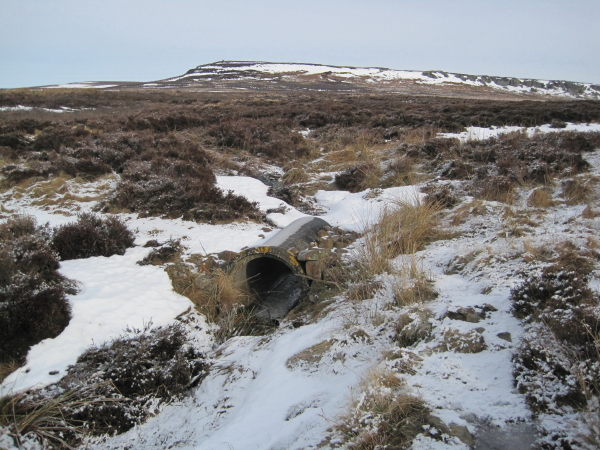 Bridge or not on the Pennine Way