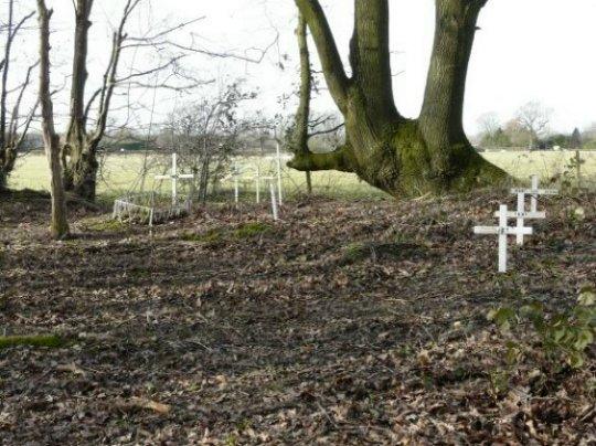 Memorials to animals, Isaac Wood