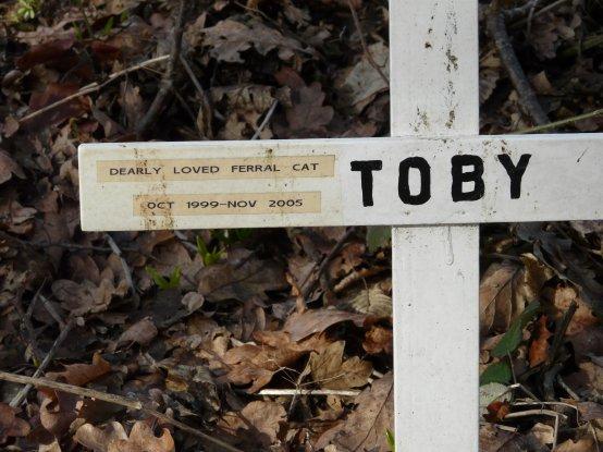 Memorial to a cat, Isaac Wood