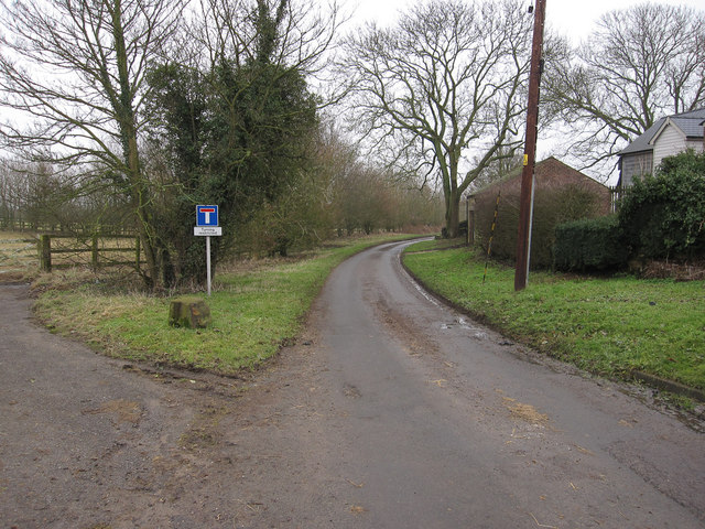 Road to Widgham Green