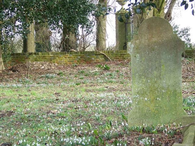 Graveyard, St Michael's Church