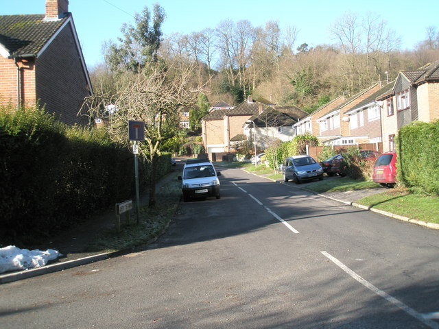 Looking from Lion Lane up Cherry Tree Avenue