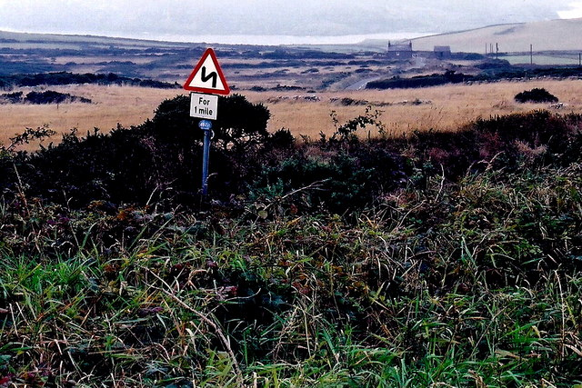 The Sound - A31 road sign on hillside