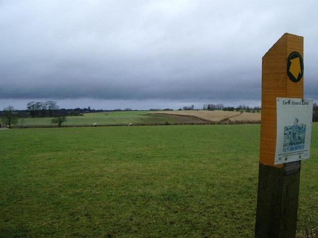 Field path, Cotesbach (towards golf course)