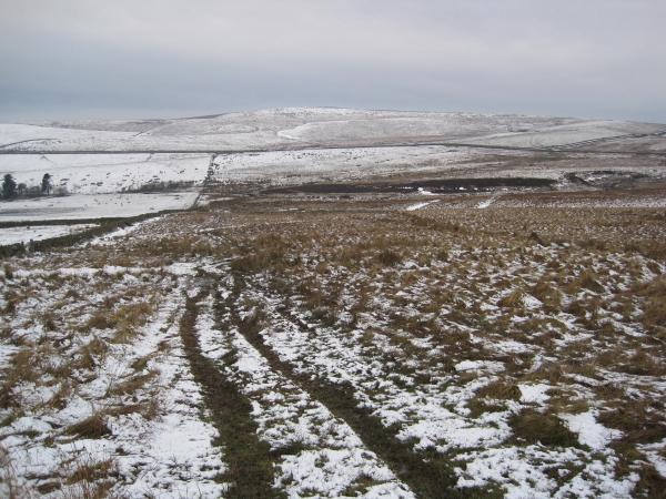 Footpath near Meg's Moss