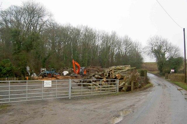 Timber yard near Dodington Ash