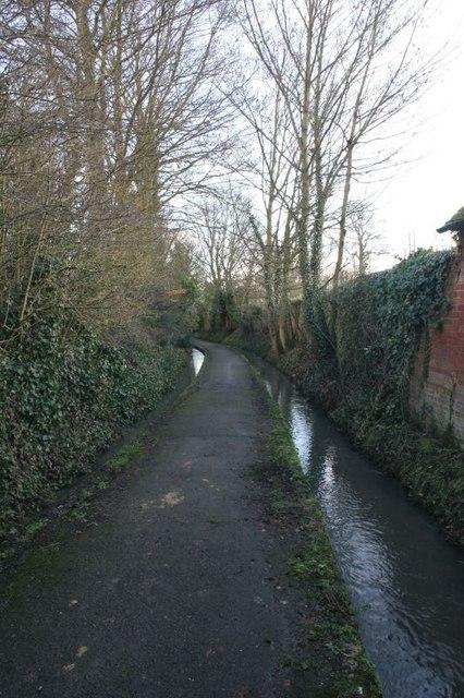 Footpath between the streams