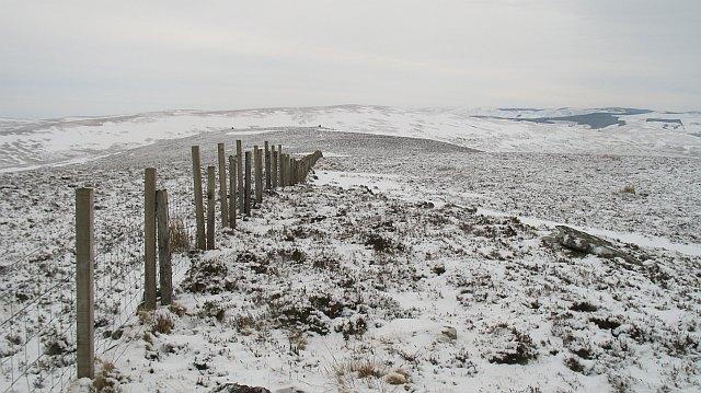 Fence on Craigengar