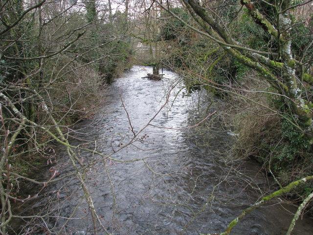 The River Mole from Mole Bridge