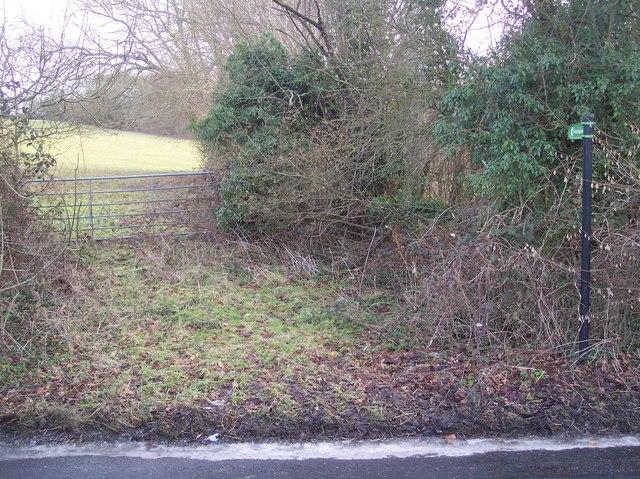 Footpath to Judd's Wood