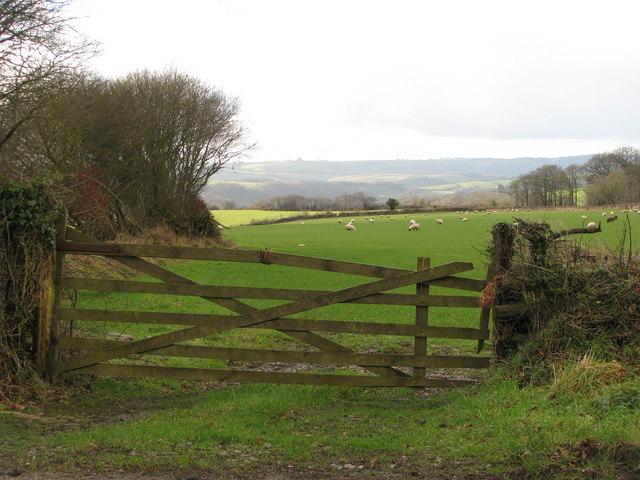 A gateway south of Beara