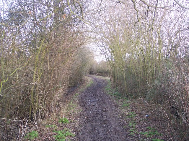 Bridleway to Lower Haysden Lane (2)
