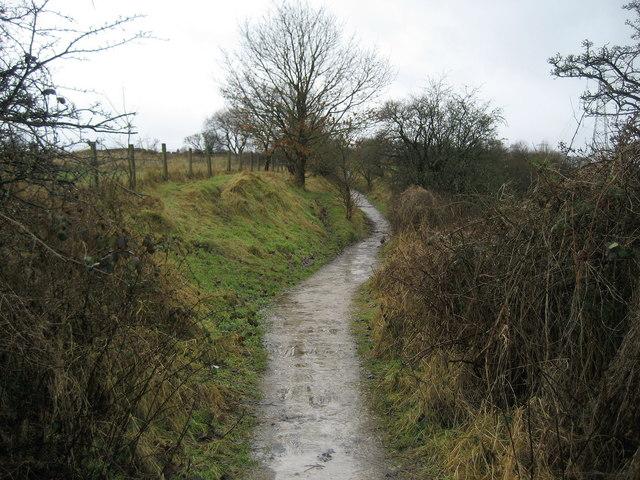 Path above Norden Brook