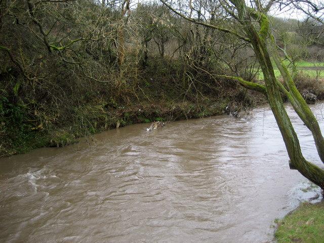 Hyndburn Brook