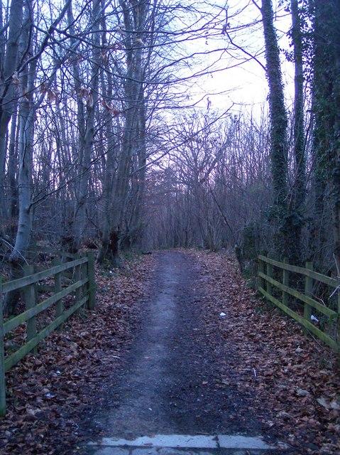 Home Farm Lane footpath