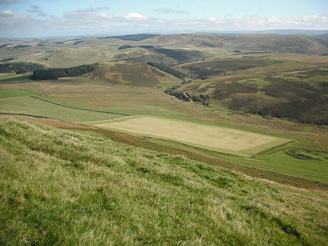 Grass field, Penchrise