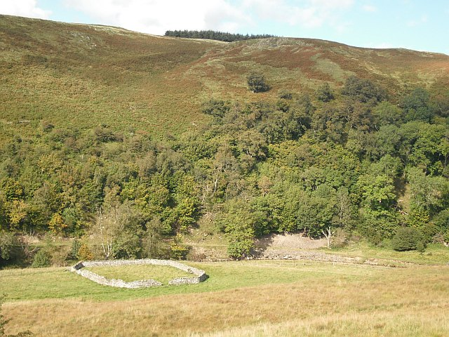 Sheep fold beside the Slitrig Water