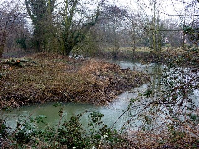 River Gipping near Alder Carr