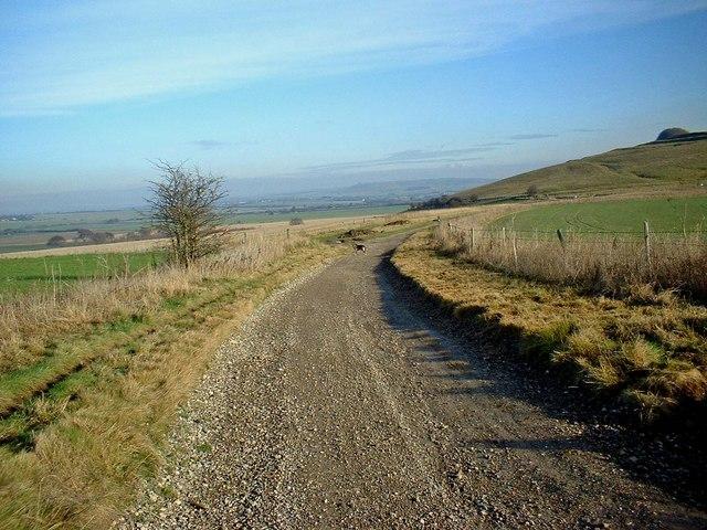 The Ridgeway near Barbury Castle