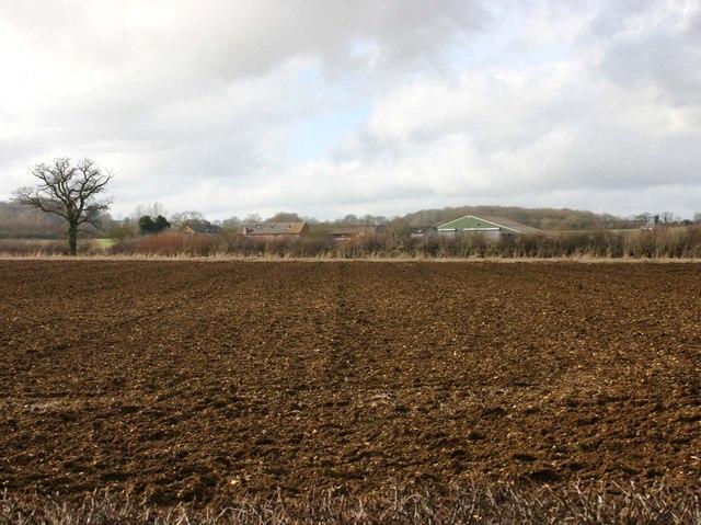 Whitfield Farm