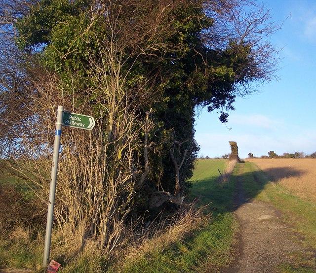 Bridleway on Bonny Bush Hill