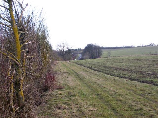 Hedgerow along A422