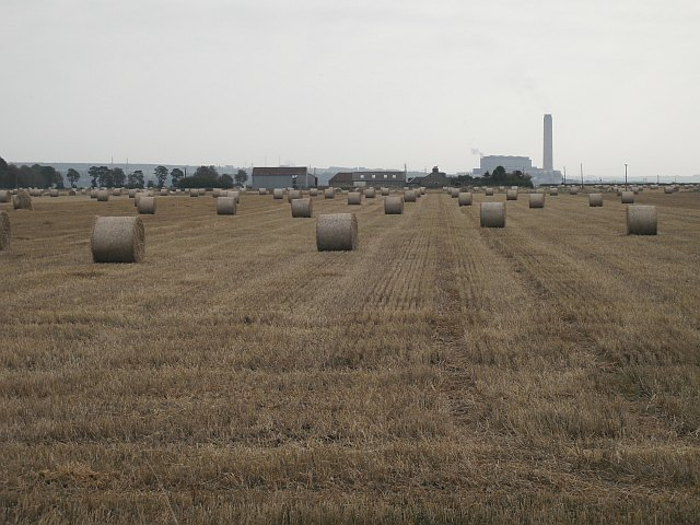 Round bales by South Bellsdyke