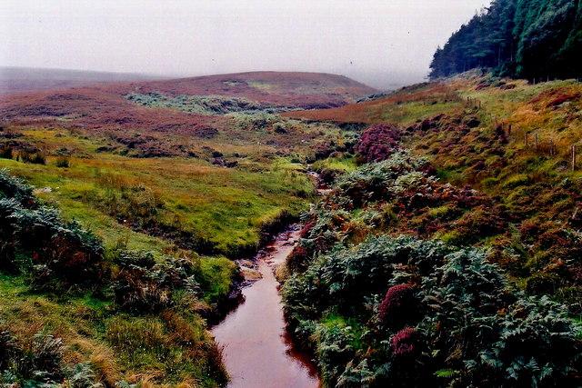 A27 - Stream east of Slieau Mooar Plantation