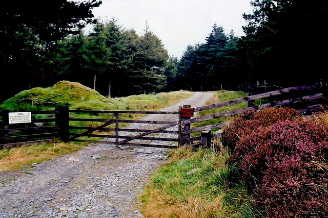 A27 - Gated entrance to Glen Rushen Plantation