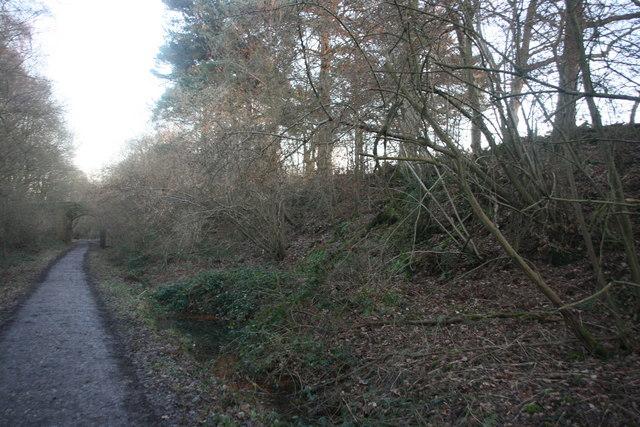Railway cutting, Forest Way