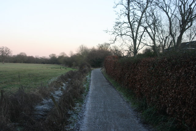 Forest Way by Hartfield Station