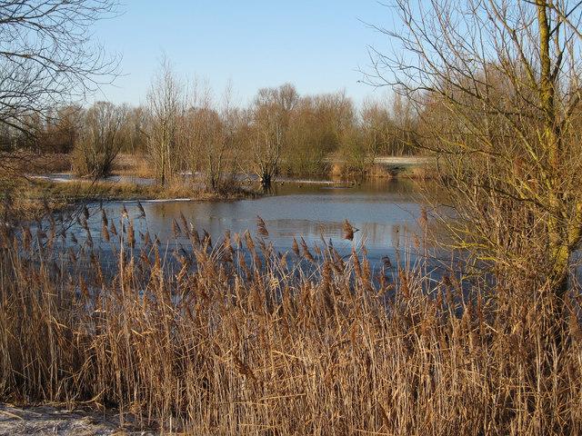 Small lake at Fen Drayton Gravel Pits