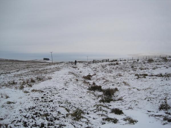 Footpath towards Hainingrigg