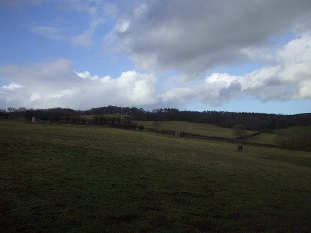 Pasture land near Caer Licyn