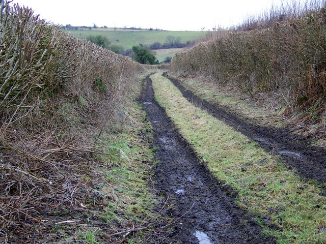 Farm track near Charlton