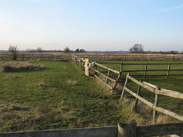Paddocks by Thirties Farm