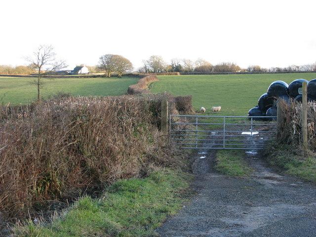 Short-cut through a field south-east of Chawleigh