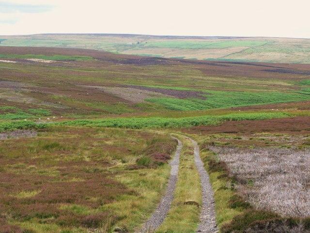 The valley of Feldon Burn (2)