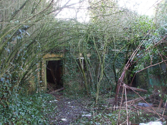 Derelict house Bowdens Lane