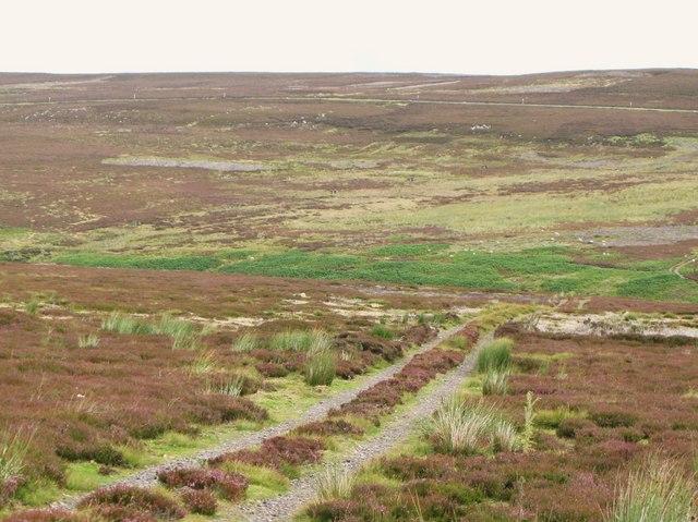 The valley of Feldon Burn