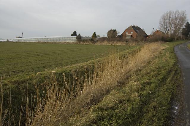 Marsh Lane, Keyingham
