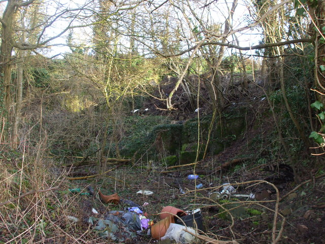 Former quarry, current rubbish-dump