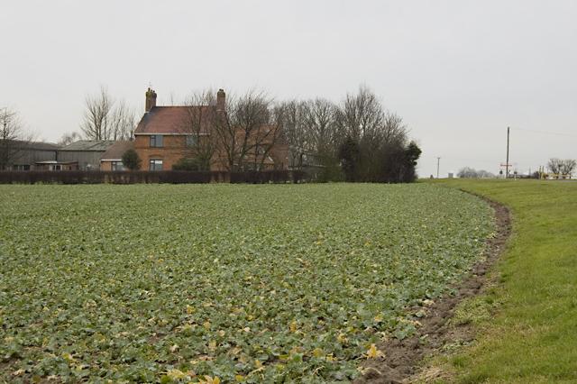 Hariff Lane Farm, Burstwick
