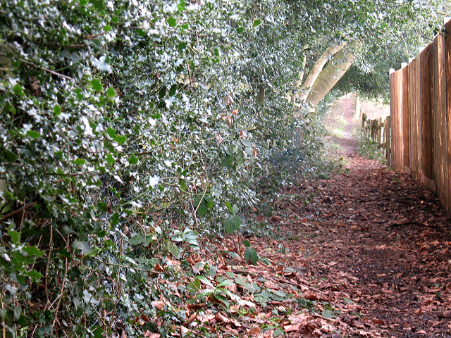 Footpath to Motts Hill Lane