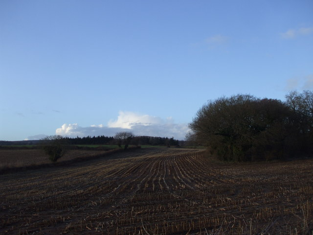Farmland, Carrow Hill