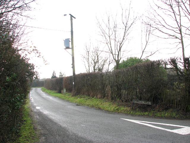 Transformer in Hallowing Lane